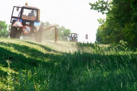 Man skal kontakte kommunen inden 15. maj, hvis man vil have hjælp til at få trimmet rabatgræsset. Genrefoto: Adobe Stock