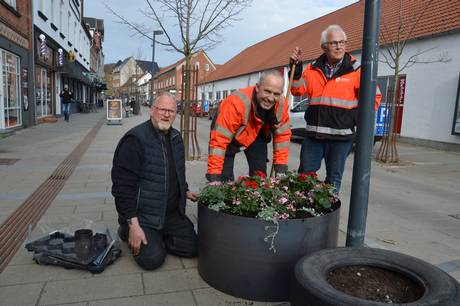 Lions Club Hadsten har spenderet 11 store blomsterkummer, der nu pryder hele midtbyen.