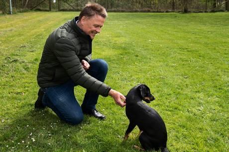 Jesper Søderberg er ikke længere direktør for Voice of Pets. Hverken han eller bestyrelsesformanden vil afsløre årsagen.