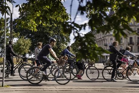 Størstedelen af cykelulykker sker i kryds, men desværre har mange cyklister opmærksomheden vendt andetsteds. Det viser nye tal fra Rådet for Sikker Trafik.