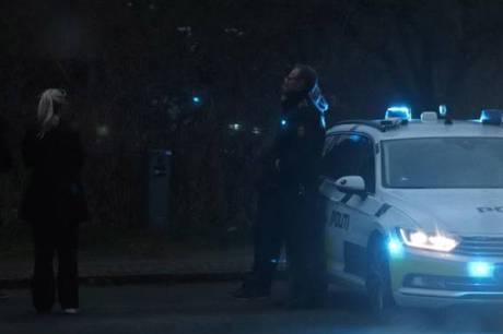 Dræbt med kniv på Mælkevejen på Christiania i København - mellem Multimediehuset og Løvehuset i nærheden af Café Månefiskeren.