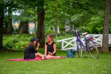 Nye bæredygtige indholdsuniverser på VisitAarhus´ websites skal gøre de grønne valg lette for gæsterne. Og en række målrettede forløb for turismevirksomhederne skal styrke forretningsudvikling, innovation, bæredygtighed, kultur- og outdoorturisme. Prfoto