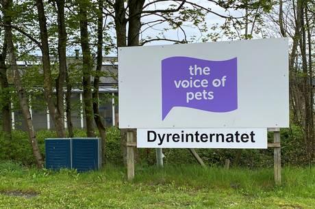 »Det vil gøre ondt, hvis det stopper her,« siger tidligere formand Povl Erik Gedde om konkurstruslen, der hænger som en mørk sky over Voice of Pets.