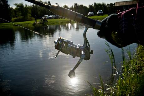 Lystfiskerforening siger stop til fiskeri i Lyngbygård Å og Aarhus Å efter konstatering af IHN-virus i Pinds Mølle Put & Take på grænsen mellem Aarhus Kommune og Skanderborg Kommune.