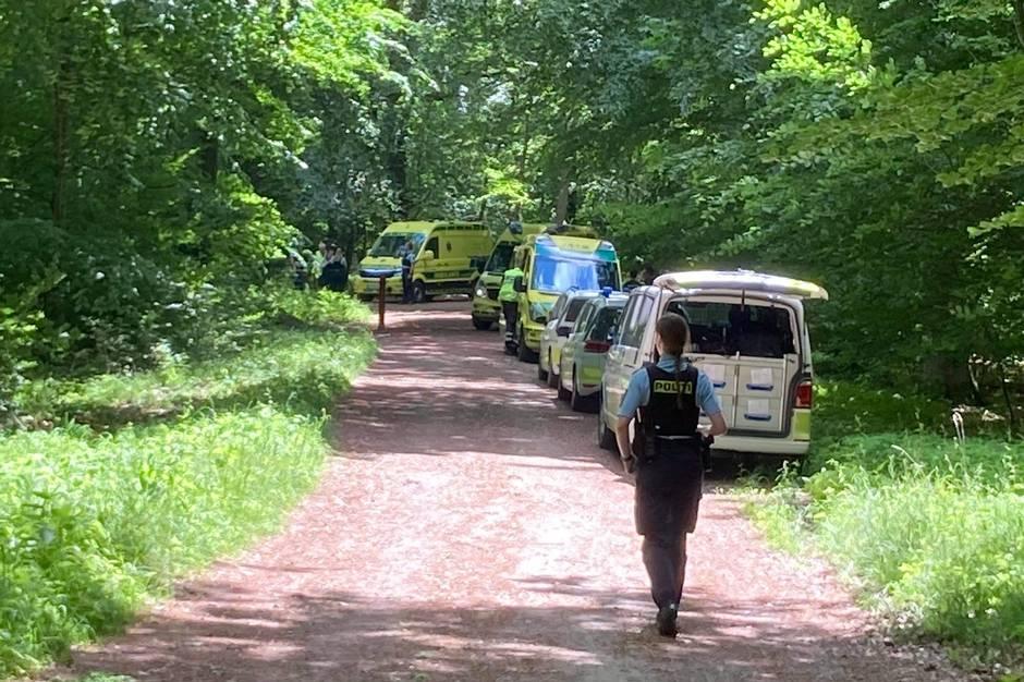 Der var flere ambulancer til stede i Boserup Skov ved Roskilde, da der søndag skete en alvorlig ulykke. Foto: Presse-fotos.dk