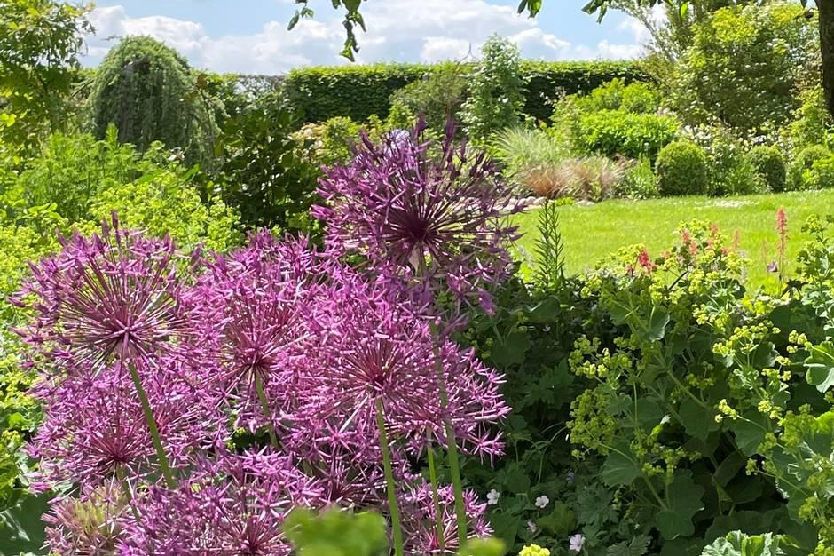Et kig ind i Lene og Ole Svenningsens have. Parret åbner haven i weekenden 26.-27. juni. Prfoto
