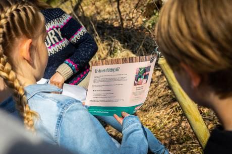 Frem til 11. september kan man tage på opdagelse i den danske natur. Naturløb består af poster med spørgsmål og opgaver, som KFUM-Spejderne sætter op rundt omkring i landet. Prfoto
