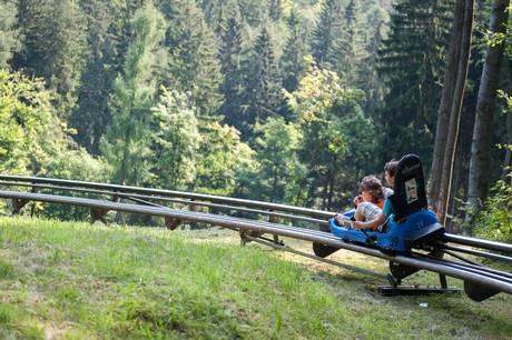 En gang var Harzen delt i øst og vest. Det er der ikke mange tegn på i dag, og Harzen byder på aktiv ferie for hele familien
