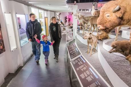 I Aarhus har vi mange gode og spændende museer, og de vil gerne have besøg.