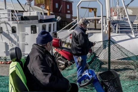 Hesselø Havvindmølleparl har fået en ny placering - fiskere mener det kan koste dyrt.