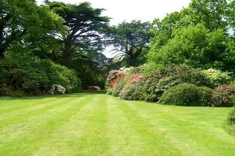 August er høstmåned og tid til at gøre status over, hvad der har fungeret i haven. Det vil også være en god idé at studse og kigge på frugtbuske og frugttræer.