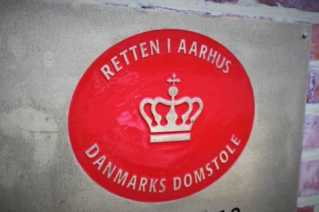 En 19-årig mand skal i grundlovsforhør i Aarhus for røveri.