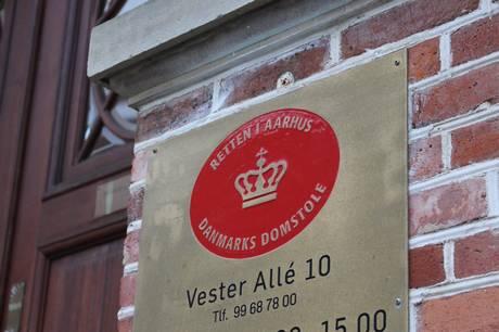 Østjyllands Politi går efter, at kvinden skal være frihedsberøvet indtil udvisning.