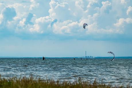 Arrangørerne af Vandfestivalen 2021 er meget tilfredse med hovedparten af de tiltag, der var sat i søen og publikumsinteressen.