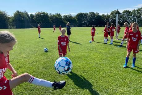 For 25. gang har der været DBU's fodboldskole i Brabrand med rekordmange deltagere. Fodboldskoleleder vil udvide til næste år.