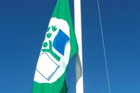 Det Grønne Flag er et synligt symbol for Molsskolens grønne arbejde, og for at skolen har gennemført et undervisningsprojekt på højt fagligt niveau.