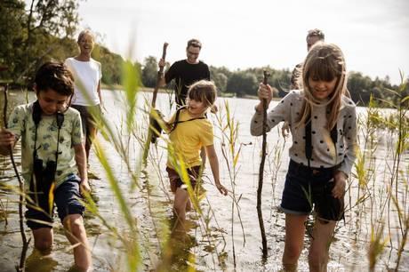 Lær at bygge levesteder til havens dyr og planter, når Favrskov Kommune inviterer til Naturens Dag 12. september på sportspladsen i Farre.