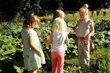 66 skolebørn, undervisere og landmænd festede og smagte på græskarsuppe af egen avl.