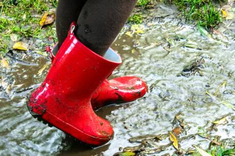 Siden DMI begyndte at foretage nedbørsmålinger, er den årlige nedbør i Danmark steget med 100 mm. Foto: Shutterstock