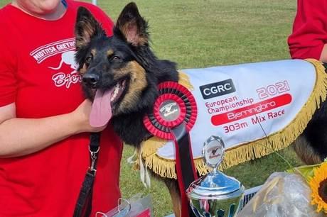 Hunden Fur And Paws Kahlu  er blevet Europamester i væddeløb for mixet hunderacer.