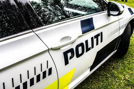 Husejer i Ry overraskede en formodet tyv i sit hjem.