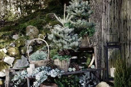 Plantorama i Tilst og Egå slår dørene op til et eventyrligt julemarked, hvor børn så vel som voksne kan komme i julestemning.